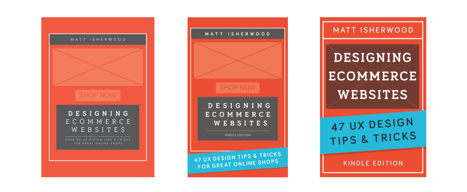 Designing Ecommerce Websites first edition covers